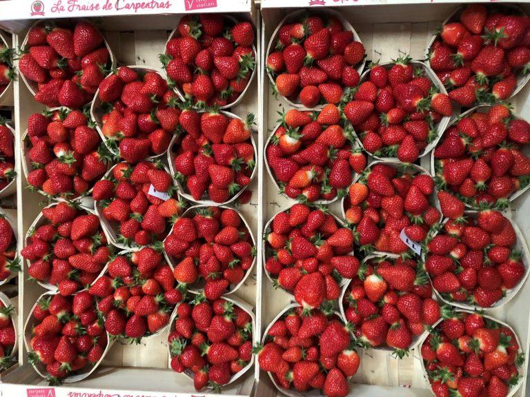 fraises c'est qui le patron