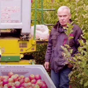 Producteurs purée de pomme C'est qui le Patron