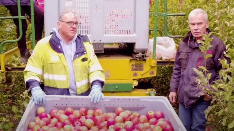 Producteur purée de pommes des consommateurs C'est qui le Patron