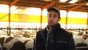 producteur de lait c'est qui le patron